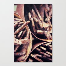 Rust 6 Canvas Print
