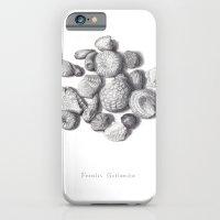 Fossils iPhone 6 Slim Case