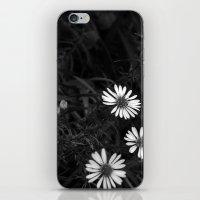 kansas can still be pretty iPhone & iPod Skin