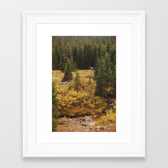 Rocky Mountain Creek Elk Framed Art Print