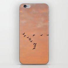 Incoming Flight iPhone & iPod Skin