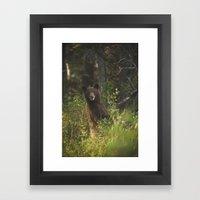 Black Bear Smile Framed Art Print