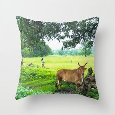 India [3] Throw Pillow