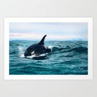 Willy Art Print