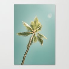 palm tree ver.summer 02 Canvas Print