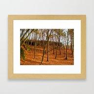 Tangerine Forest Framed Art Print