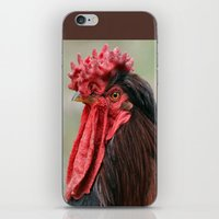 Le Coq iPhone & iPod Skin