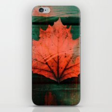 Rusty red dried fall leaf on wooden hunter green beams iPhone & iPod Skin