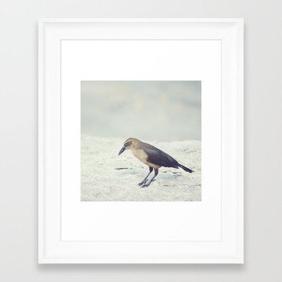 Little Bird I Framed Art Print