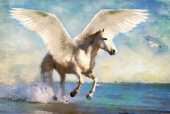 Pegasus taking flight Art Print