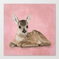 Portrait Of A Small Fawn… Canvas Print