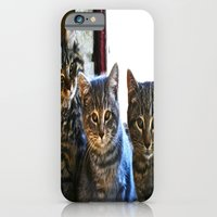 What Are You Looking At?… iPhone 6 Slim Case