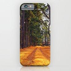 September path iPhone 6s Slim Case