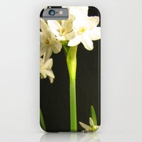iPhone & iPod Case featuring Paperwhites by Nelka