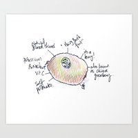 Kiwi fruit. Art Print