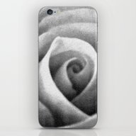 Flower Of The Rose iPhone & iPod Skin