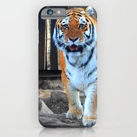 iPhone & iPod Case featuring Zoo by Natasha Ramon