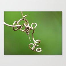 tangle vine 1 Canvas Print