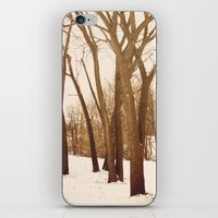 Resting Trees iPhone & iPod Skin