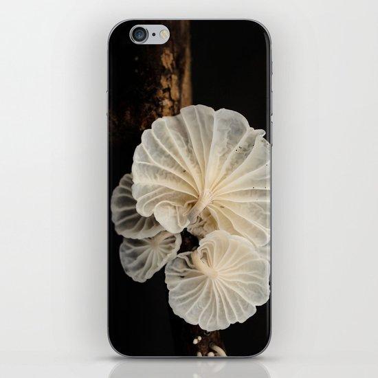 Mushroom Gills iPhone & iPod Skin