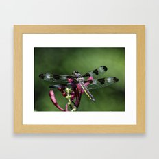 The original biplane Framed Art Print