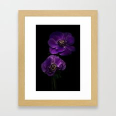 Two Purple Anemones Framed Art Print