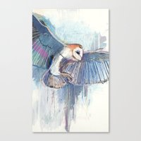 Broken Owl Canvas Print