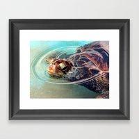 Green Sea Turtle Framed Art Print