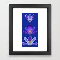 Purple Crocus Triptych Framed Art Print