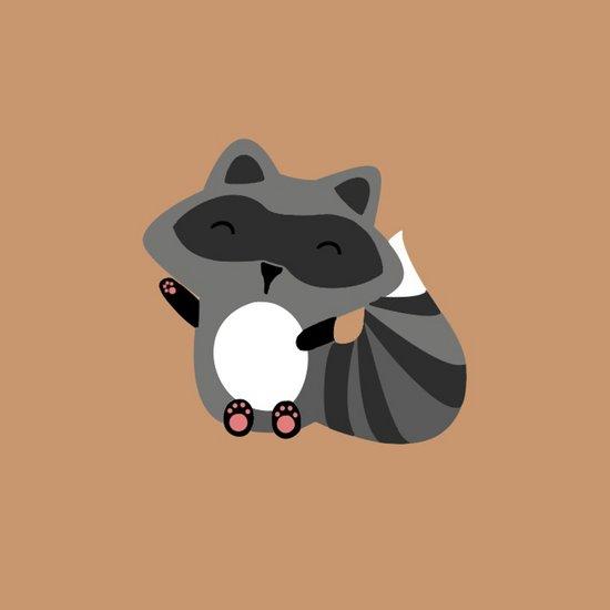 Raccoon Art Print