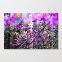 Fuchsia Dream Canvas Print