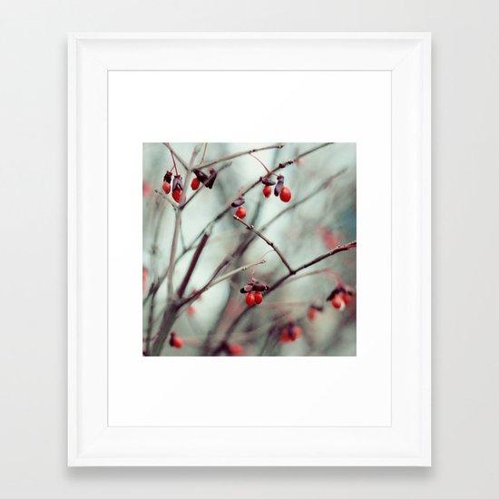 December Dream Framed Art Print