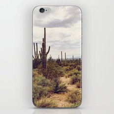 Under Arizona Skies iPhone & iPod Skin