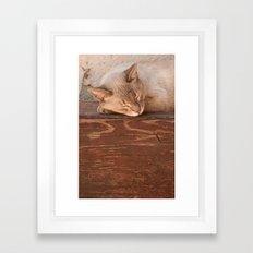 Alka Framed Art Print