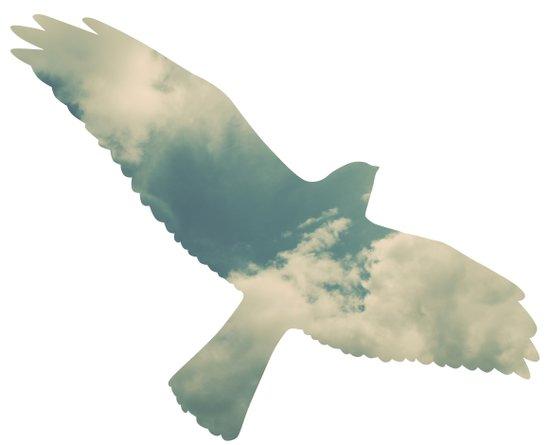 Cloud Bird Art Print