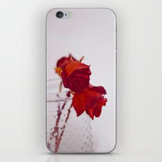 red rose. iPhone & iPod Skin