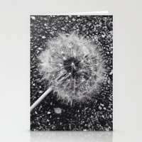 Dandelion in black and white Stationery Cards