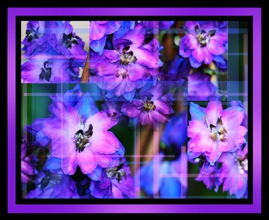 Beautiful Purple And Blue Flowers 3 Art Print