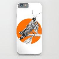 Grasshopper iPhone 6 Slim Case