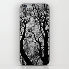Dark Woods iPhone & iPod Skin
