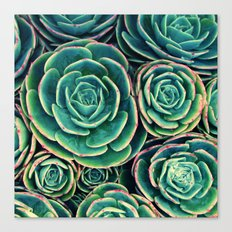Rosettes in Green Canvas Print