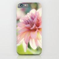 Dahlia 1 iPhone 6 Slim Case