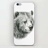 Grizzly Bear G2012-059 iPhone & iPod Skin