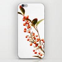 A Fruitful Life iPhone & iPod Skin