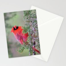Spring Cardinal Stationery Cards