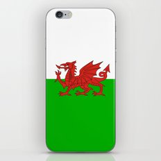 wales country flag united kingdom  iPhone & iPod Skin
