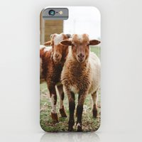 iPhone & iPod Case featuring Counting Sheep by Hello Twiggs