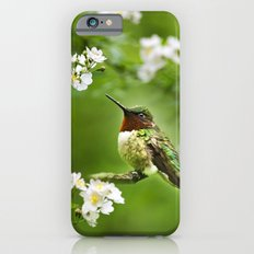 Hummingbird Flora iPhone 6 Slim Case