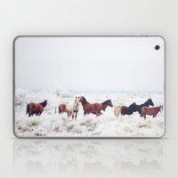 Winter Horseland Laptop & iPad Skin