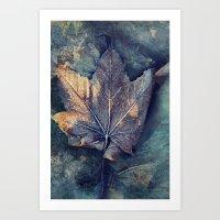 Frost Leave Art Print